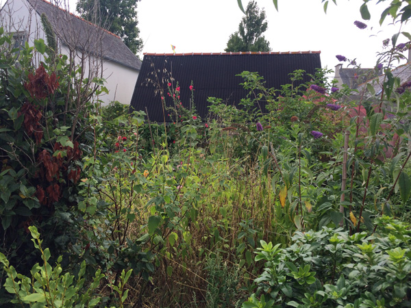 Jardin biodivers - Lechiagat