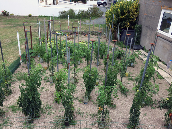 Agriculture urbaine - Lechiagat