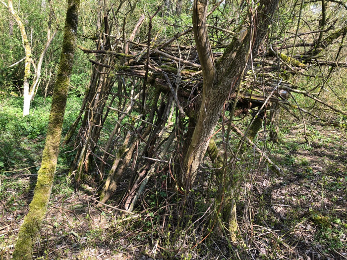 Construction en bois mort - Lambersart